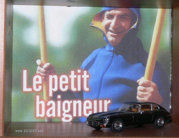 Jaguar Petit Baigneur